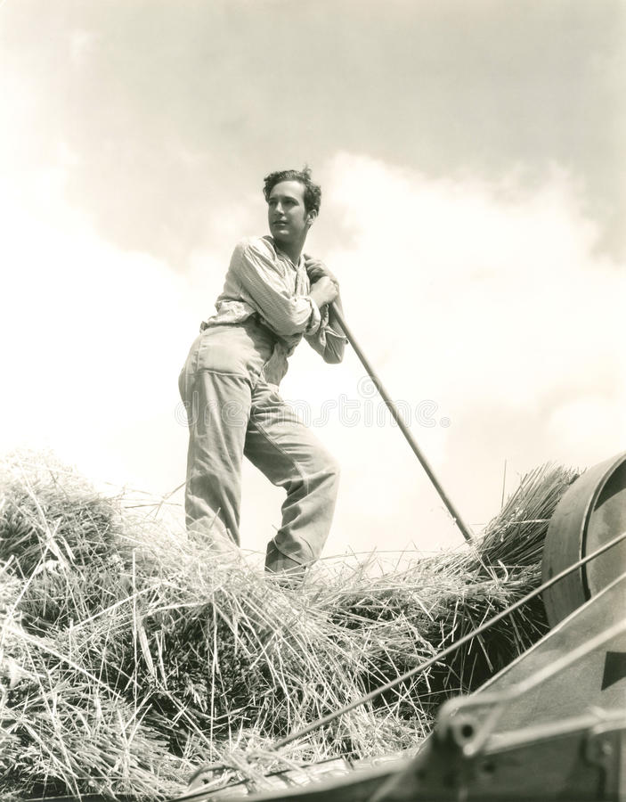 Baling hay stock photo