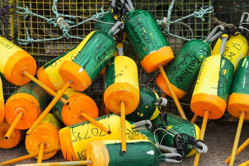 Balises colorées de homard empaquetées ensemble à côté des pièges photos libres de droits