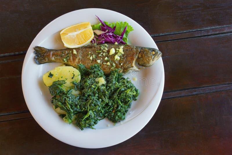 Balkan kokkonst Grillad fisk med lövrika gröna grönsaker på den vita plattan M?rk lantlig bakgrund Lekmanna- l?genhet, fritt utry royaltyfria foton