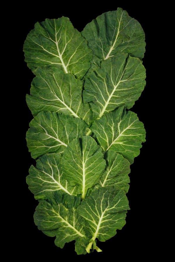 Balkan kokkonst Rastan - populära lövrika grönsaker som isoleras på svart bakgrund Lekmanna- l?genhet arkivbild