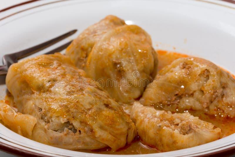 Balkan sarma meal served on the plate.  stock image