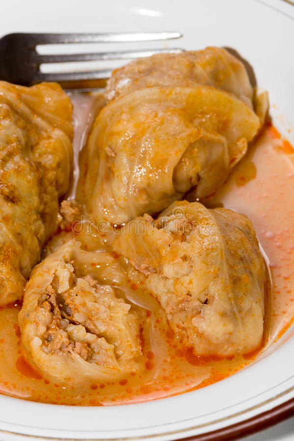 Balkan sarma meal served on the plate.  stock photos