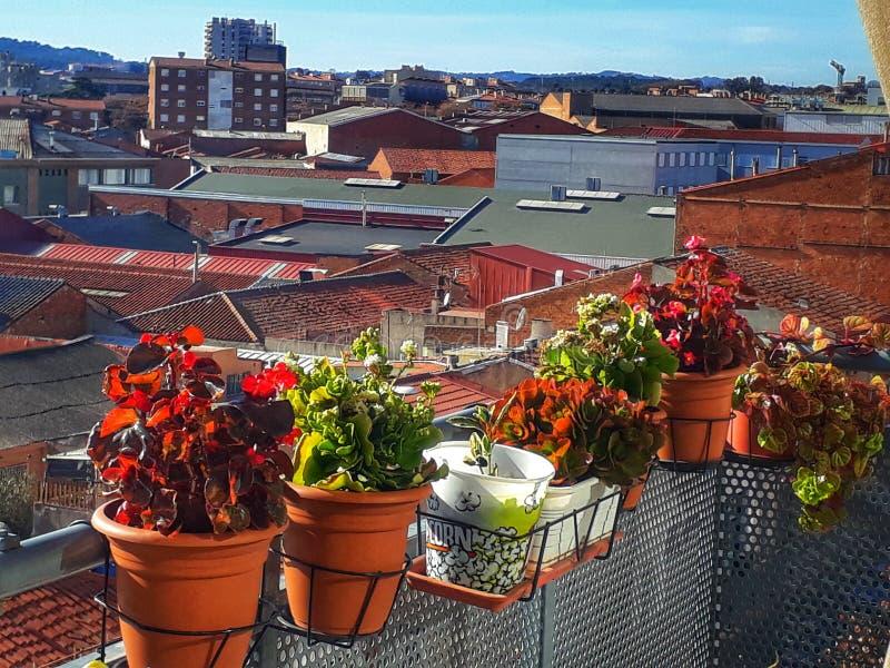 Balkon met bloemen royalty-vrije stock afbeelding
