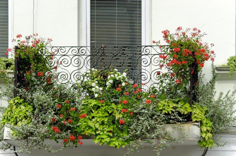 balkon na budynku w mieście z jaskrawymi kwiatami zdjęcie stock