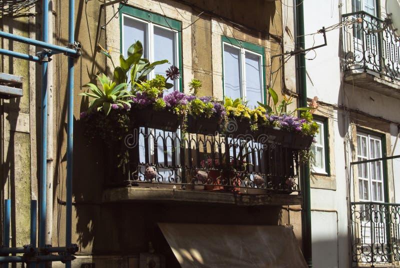 Balkon op een gebouw in het Alfama-district met verschillende installaties en bloemen stock foto's