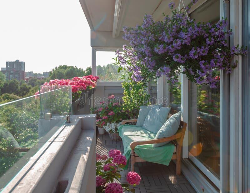 Balkon rośliny, piękni różni barwioni kwiaty, błękitny niebo zdjęcia stock