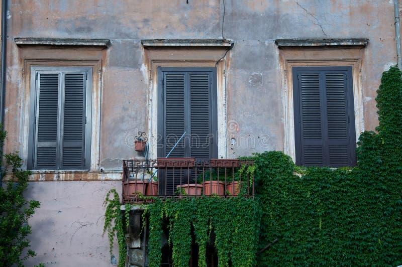 Balkong med fönster som täckas med murgrönan royaltyfri foto