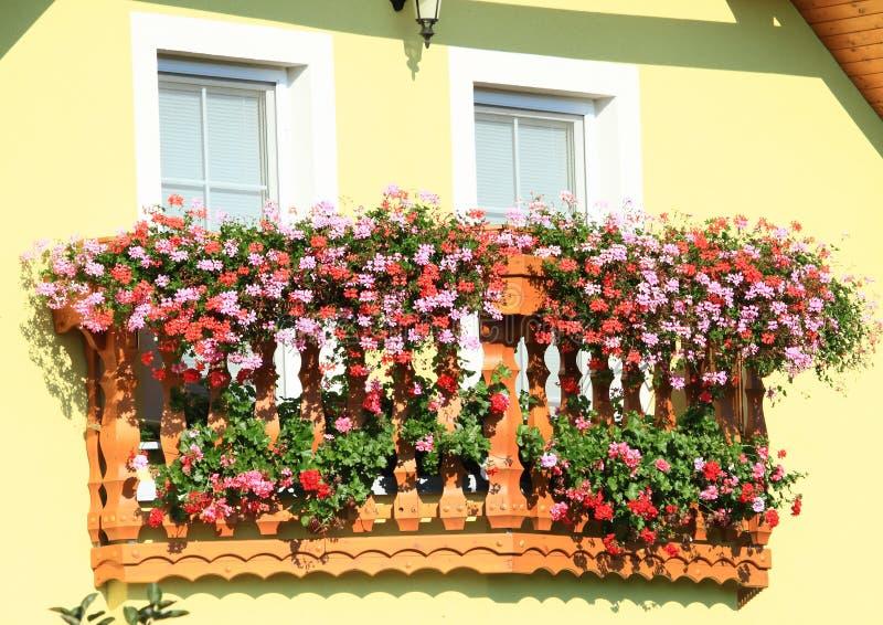 Balkong med röda och rosa färgblommor arkivbild