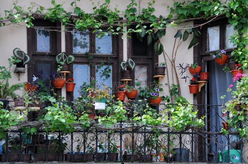 balkongträdgård arkivbilder