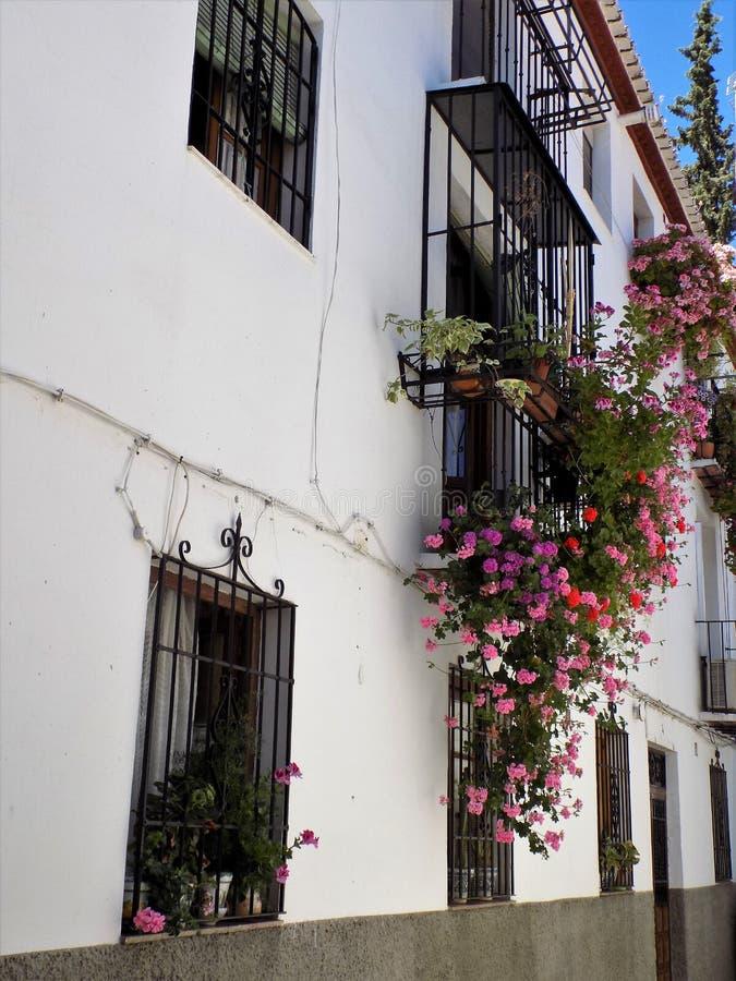 Balkons en vensters met bloemen van albayzin-Granada - Andalusia stock afbeeldingen