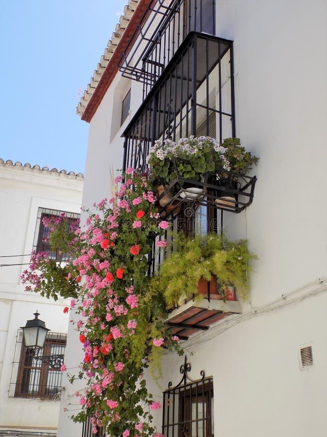 Balkons en vensters met bloemen van albayzin-Granada - Andalusia royalty-vrije stock afbeelding