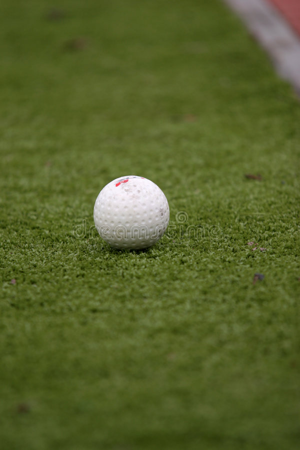 Download Ball on the grass stock photo. Image of team, hockey, ball - 1700114