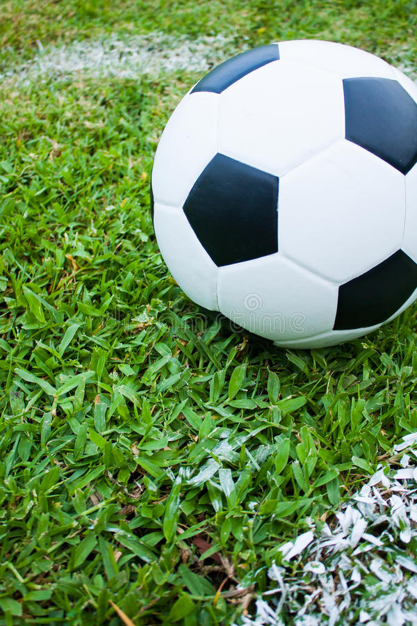 Download Ball In Grass. Royalty Free Stock Images - Image: 26519119