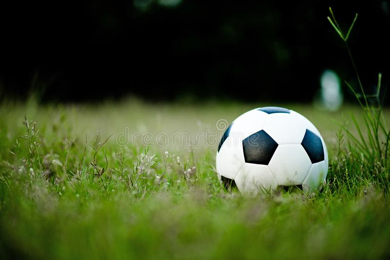 The ball on the grass in the green field on the football field ready for the penalty. And start playing football seriously royalty free stock photos