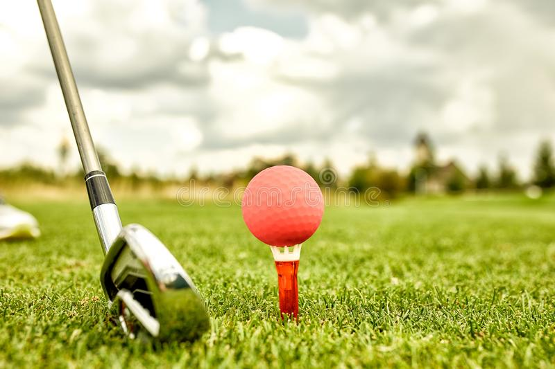 The ball at the hole on the golf course. Golf concept. Closeup of a golf ball on green grass next to a golf club before royalty free stock image