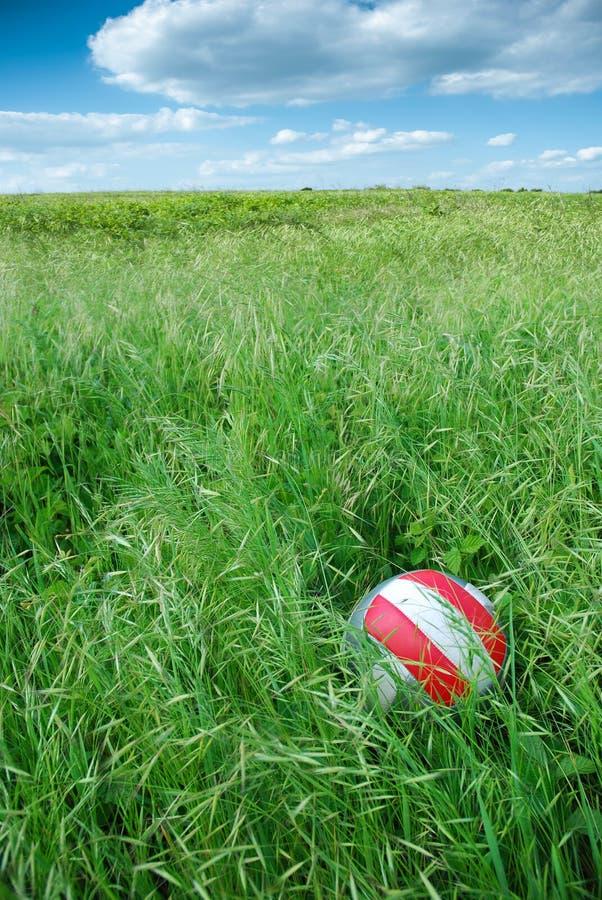 Ball im Gras am Picknick lizenzfreie stockfotos