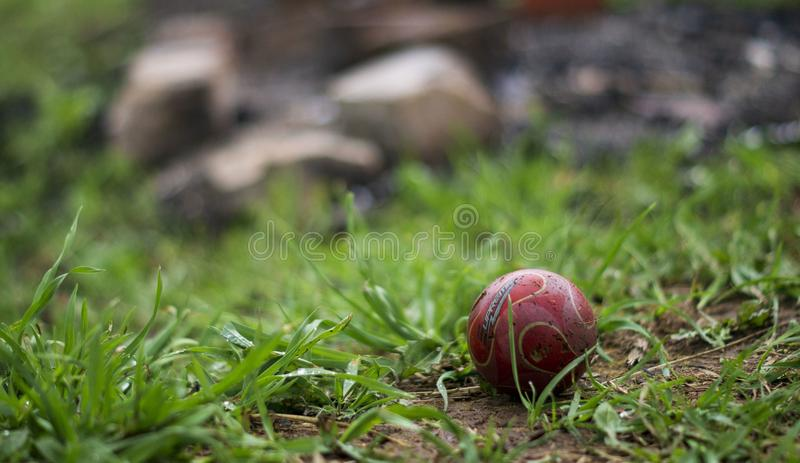 A ball for playing with a dog on the background of a pile of rubbish stock photo