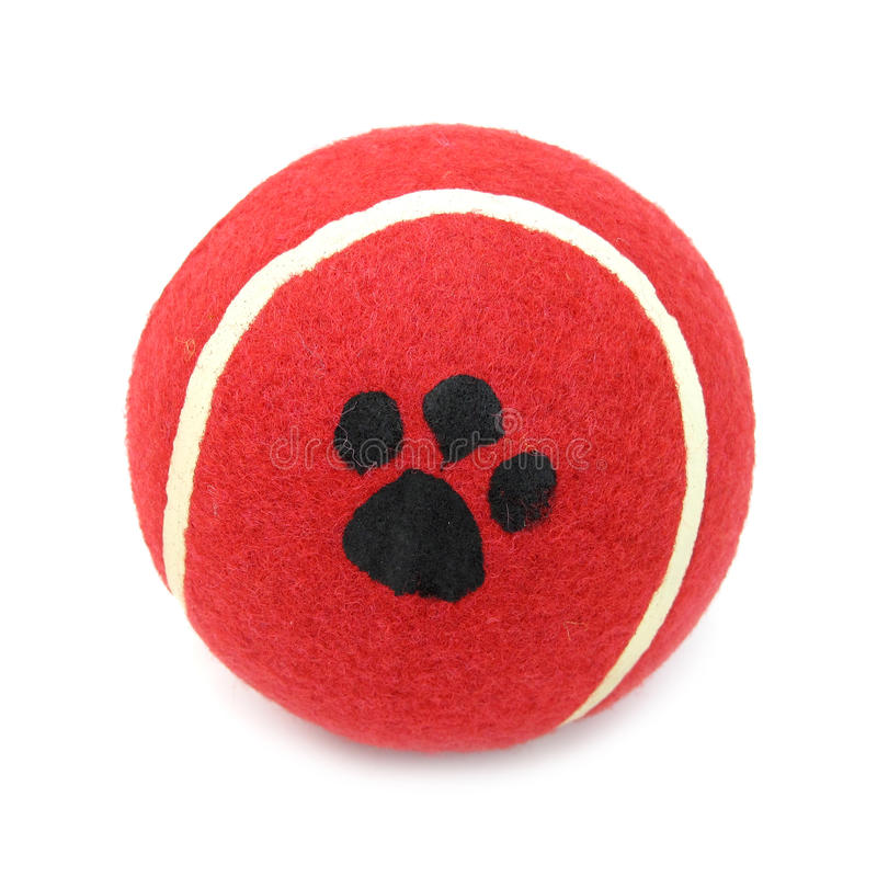 Free Ball Red Tennis For Pets Dogs Stock Photo - 12334680