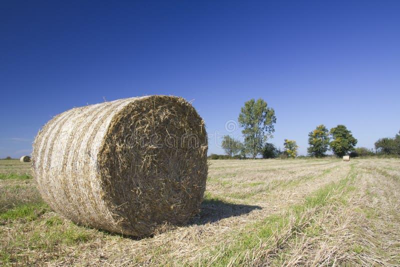 Ball of straw stock photos