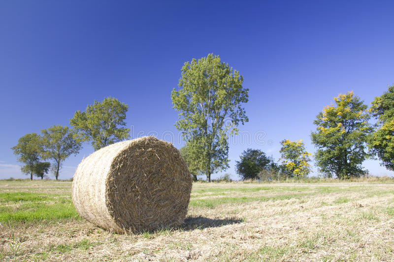 Ball of straw stock photography