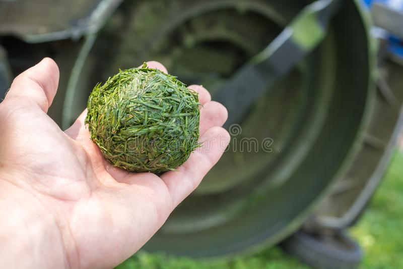 Balle écrasée d'herbe avec le fond d'une tondeuse à gazon à l'arrière-plan photo libre de droits