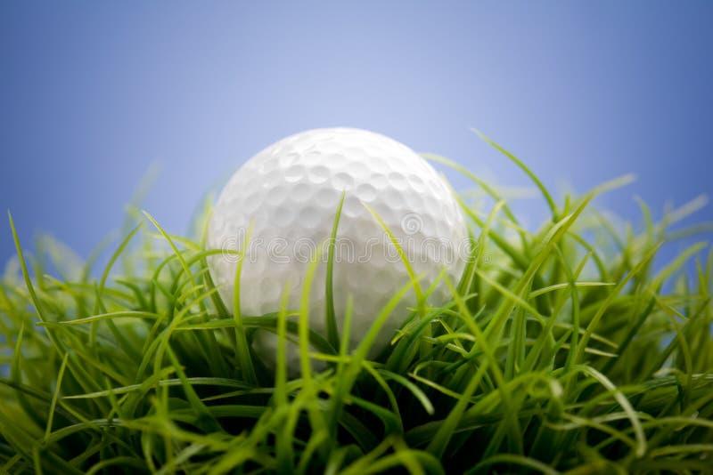 Balle de golf photographie stock libre de droits