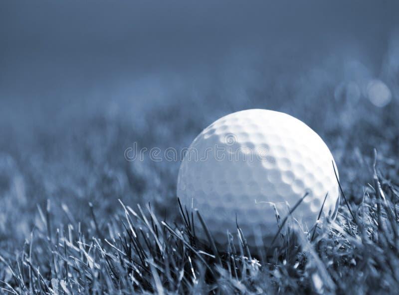Balle de golf dans l'herbe photos libres de droits