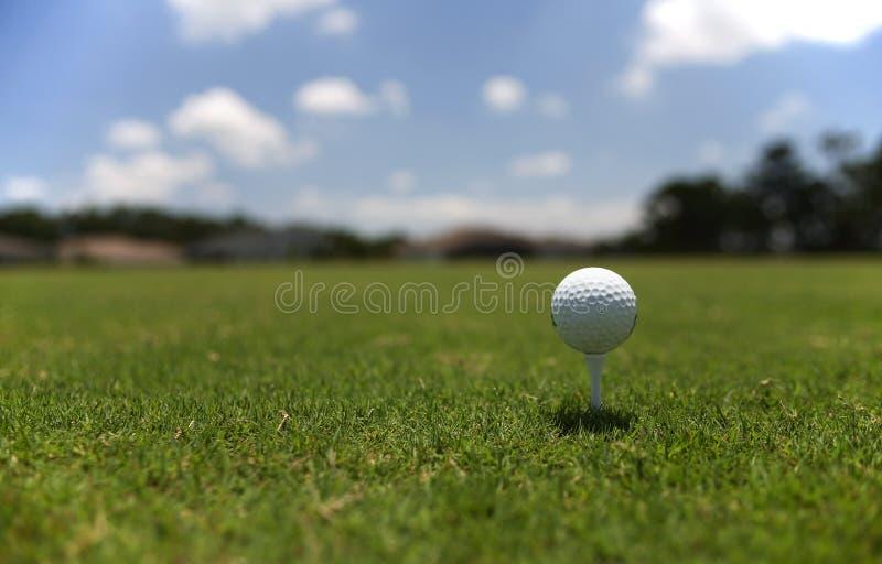 Balle de golf sur la pièce en t photographie stock