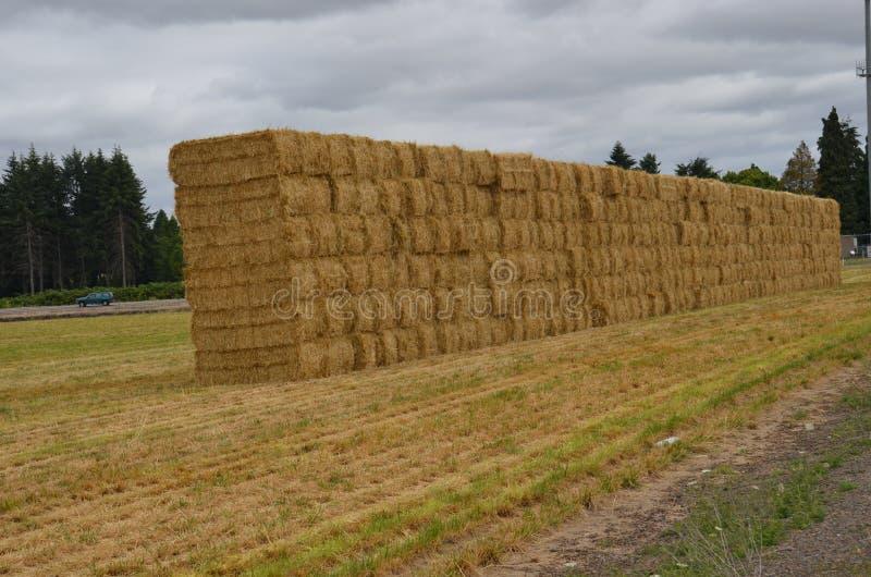 Balle di fieno impilate vicino ad Albany, Oregon immagini stock libere da diritti