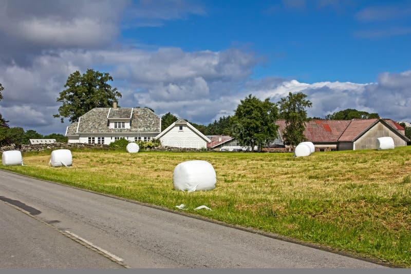 Balle di fieno in Norvegia fotografie stock libere da diritti