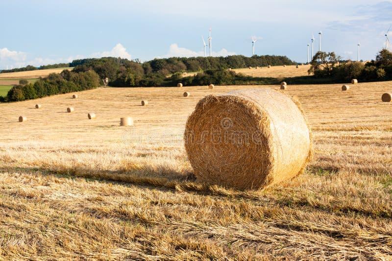 Balle di fieno sul campo dopo il raccolto, Germania fotografia stock libera da diritti