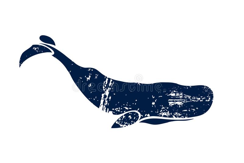 Ballena de esperma Macrocephalus del Physeter Ballena aislada en un fondo ligero Logotipo para su diseño tinta stock de ilustración