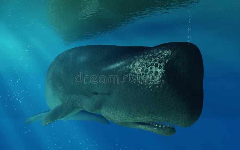 Ballena de esperma subacuática ilustración del vector