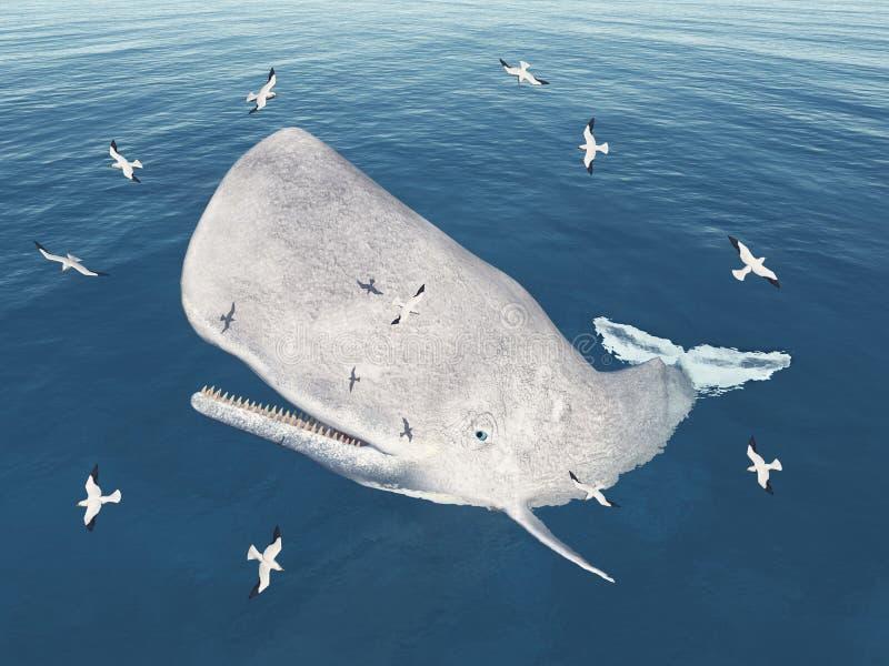 Ballena de esperma y gaviotas emergentes ilustración del vector