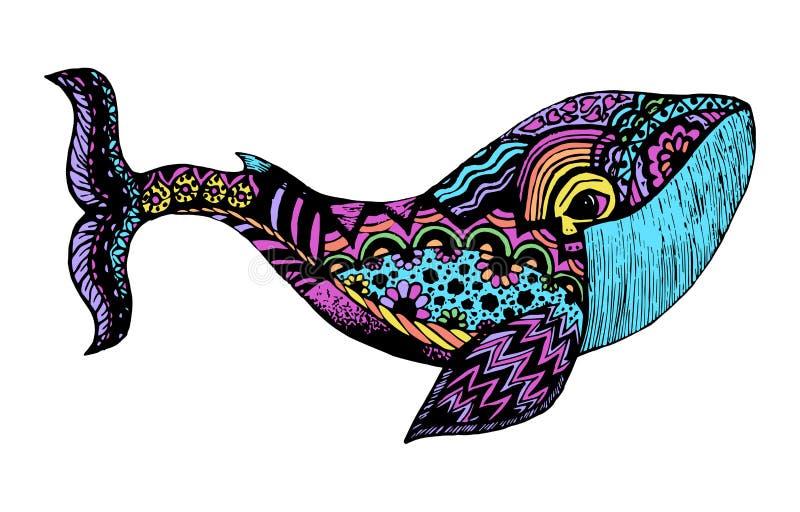 Ballena dibujada mano Ejemplo aislado con los altos detalles en estilo del zentangle ilustración del vector