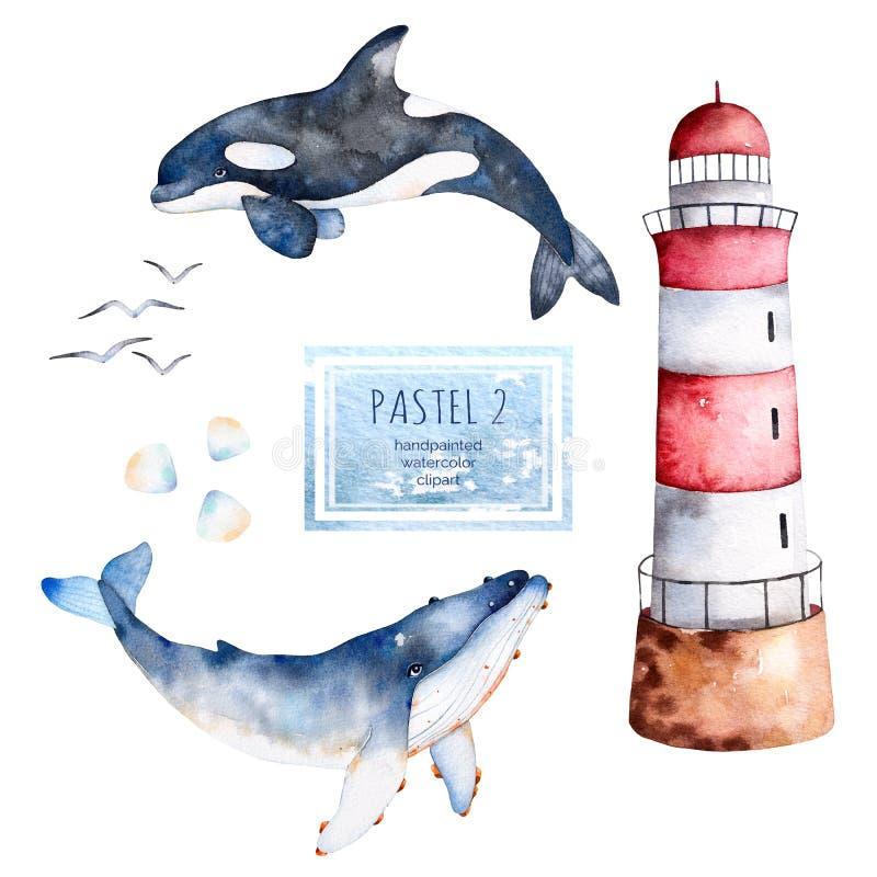 Ballenas, conchas marinas y faro pintados a mano de la acuarela en colores en colores pastel ilustración del vector