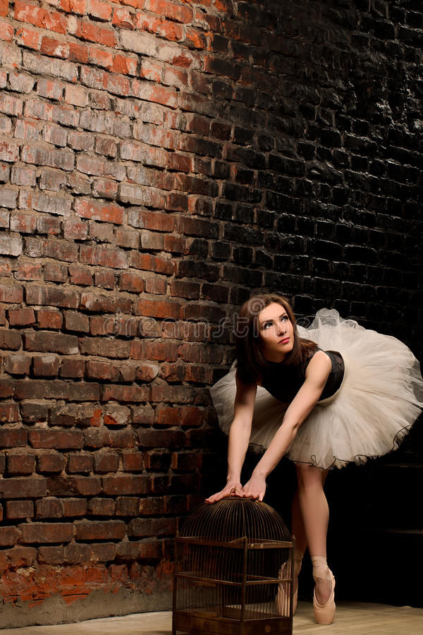 Ballerina στο tutu κοντά στο τουβλότοιχο στοκ εικόνες