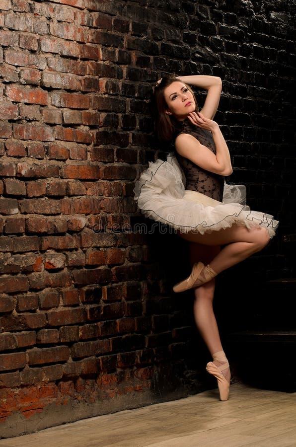 Ballerina στο tutu κοντά στο τουβλότοιχο στοκ φωτογραφία