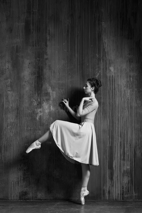 Το νέο όμορφο ballerina θέτει στο στούντιο στοκ εικόνες