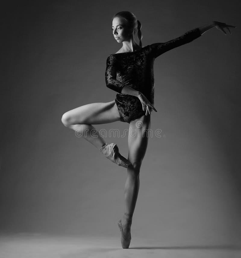 Ballerina in attrezzatura nera che posa sulle dita del piede, fondo dello studio immagine di gradazione di grigio immagine stock