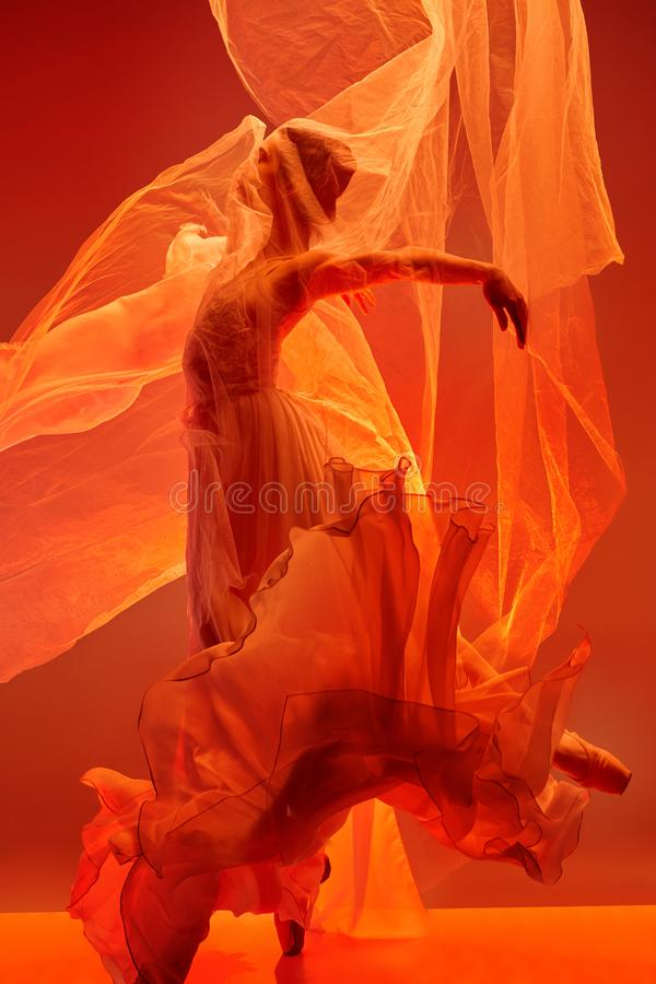 ballerina  Beleza do bailado clássico imagens de stock