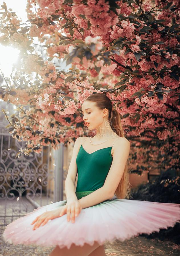 Ballerina che balla contro lo sfondo della fioritura degli alberi di sakura fotografie stock