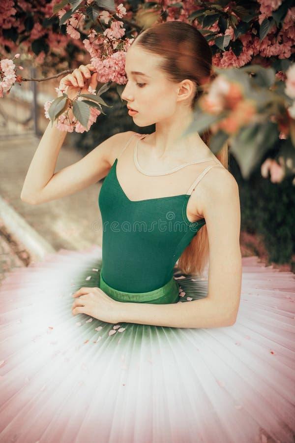 Ballerina che balla contro lo sfondo della fioritura dell'albero di sakura closeup immagini stock libere da diritti