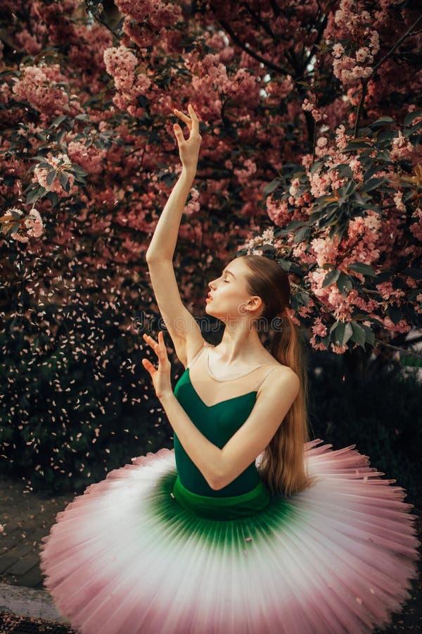 Ballerina che balla contro lo sfondo della fioritura gli alberi di sakura e dei petali di caduta fotografia stock libera da diritti
