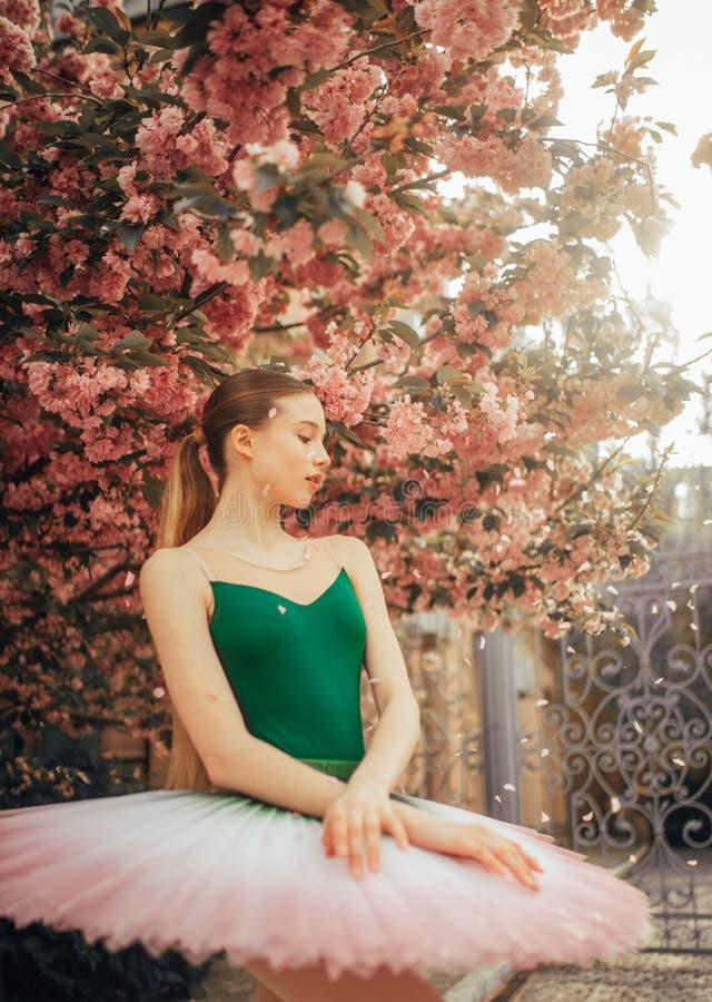 Ballerina che balla contro lo sfondo della fioritura gli alberi di sakura e dei petali di caduta fotografie stock