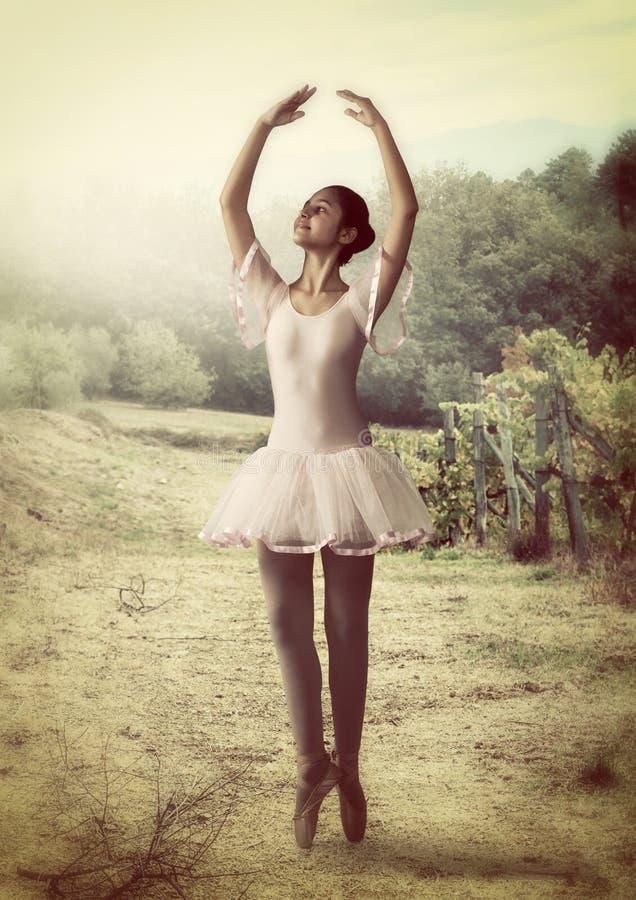 Ballerina i en vingård i Tuscany royaltyfria foton