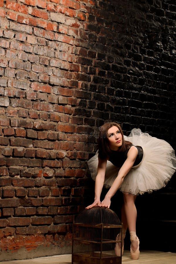Ballerina im Ballettröckchen nahe Backsteinmauer stockbilder