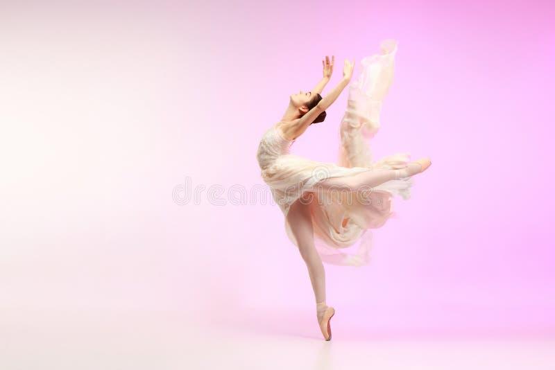 ballerina Junges würdevolles weibliches Balletttänzertanzen über rosa Studio Schönheit des klassischen Balletts lizenzfreie stockfotos