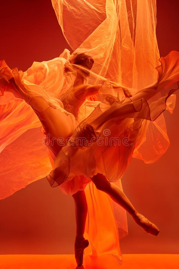 ballerina  Schönheit des klassischen Balletts lizenzfreies stockfoto