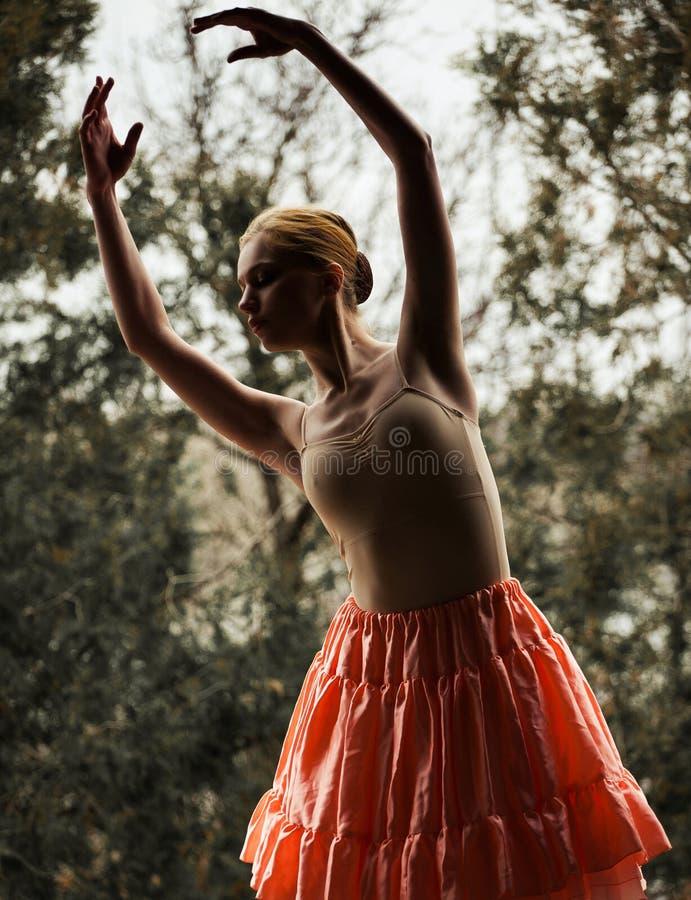 Ballerina su fondo degli alberi immagini stock